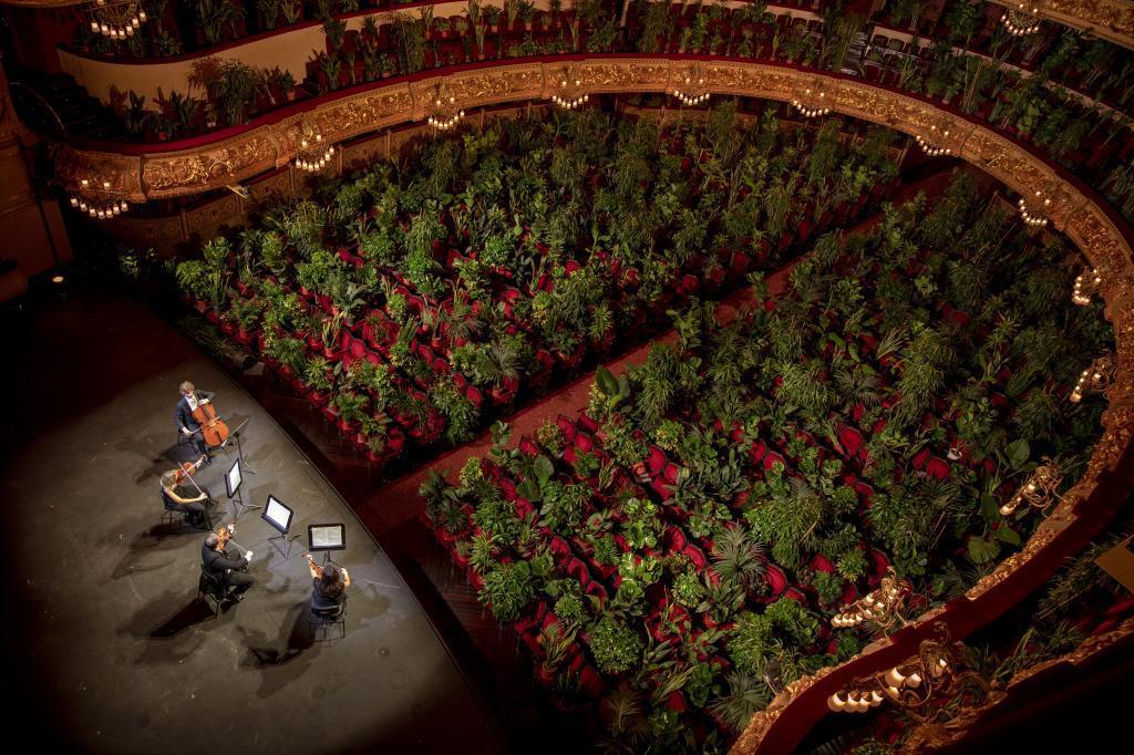 Un cuarteto actúa en el escenario del Liceu de Barcelona, sin público.