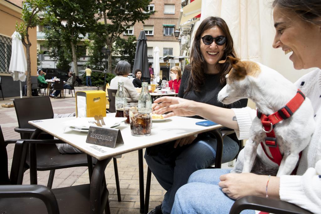 Dos comensales en un bar de Madrid