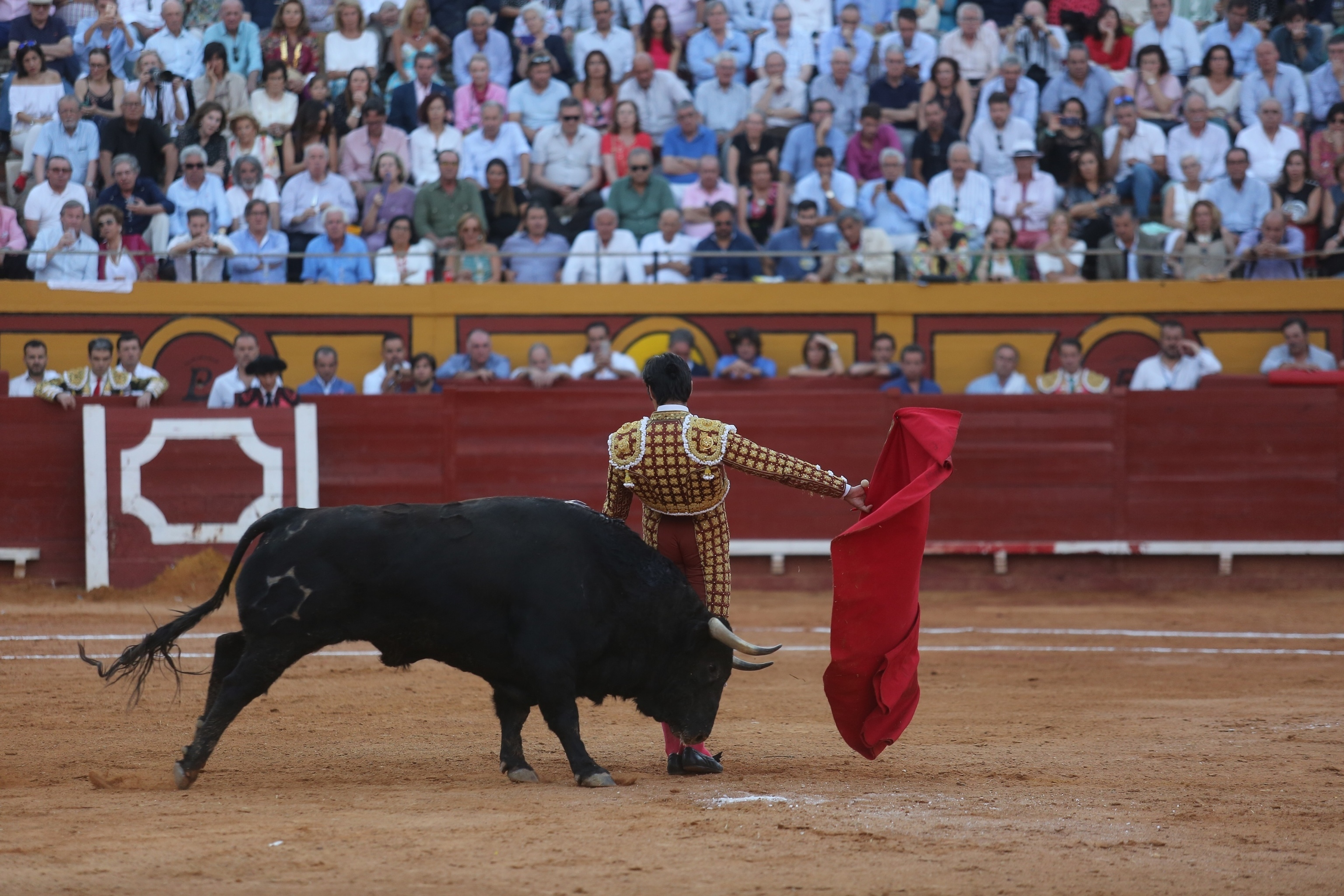 ANOET lamenta ahora que Algeciras se quede sin toros tras la renuncia de Montes