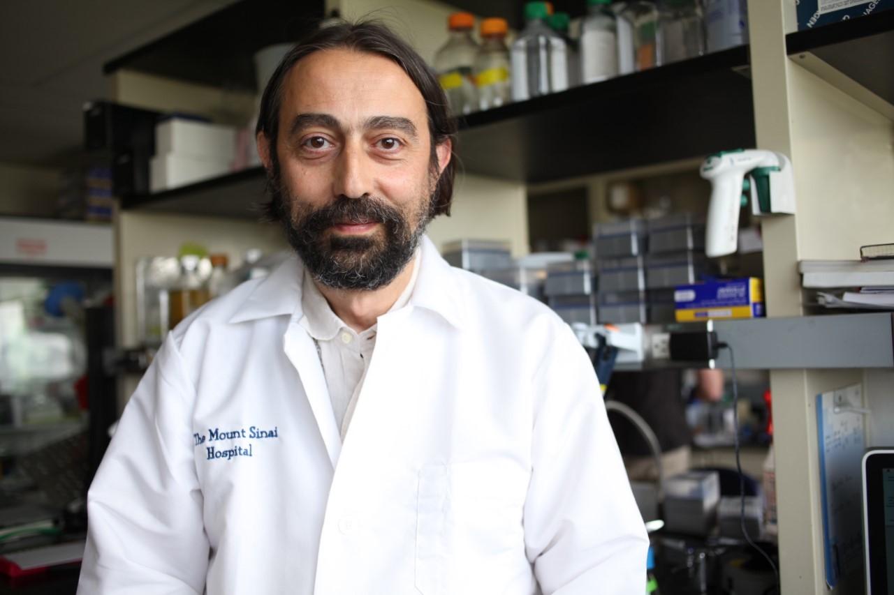 El investigador español Adolfo García-Sastre, en su laboratorio de Nueva York.