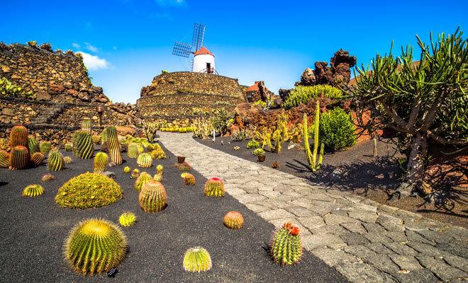 Jardín de cactus de Lanzarote.