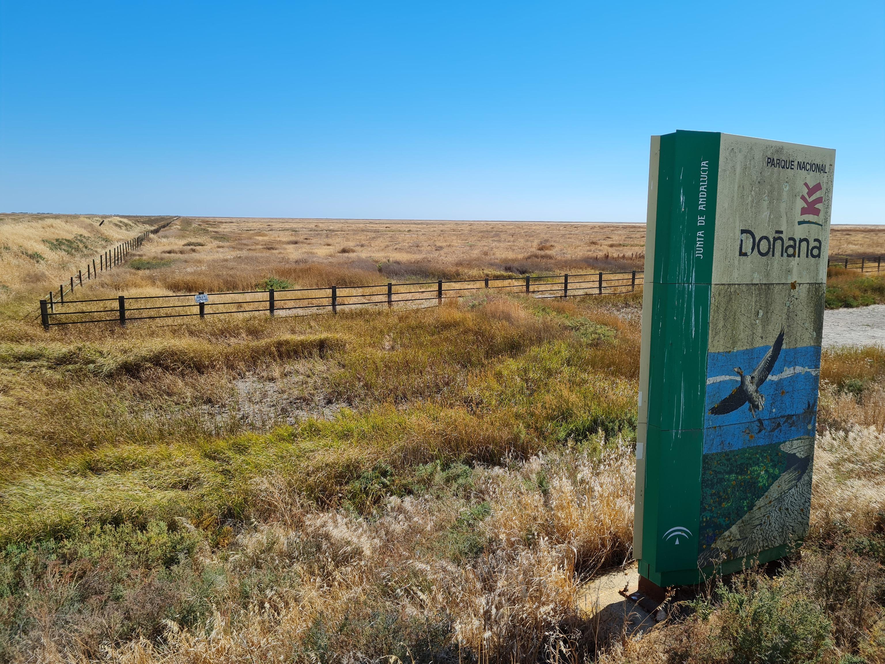 Imagen de una extensión seca en la finca Caracoles, dentro del Parque Nacional de Doñana.