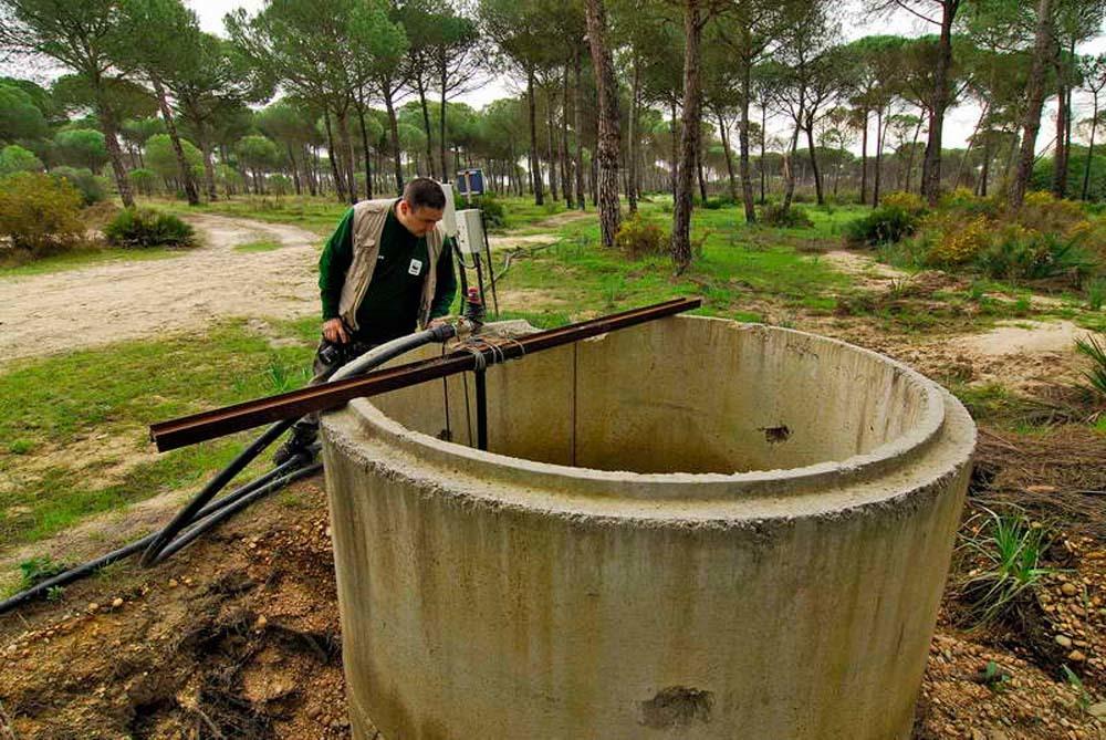 Uno de los pozos ilegales detectados dentro de Doñana.