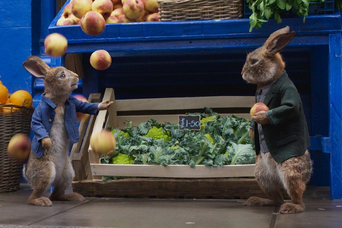 Peter Rabbit y su 'nuevo amigo' Barnabás.