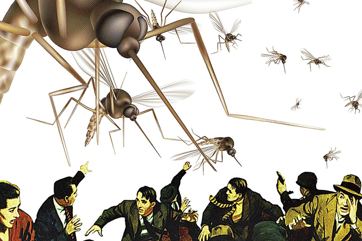 Mosquitos: Evita ser su blanco este verano