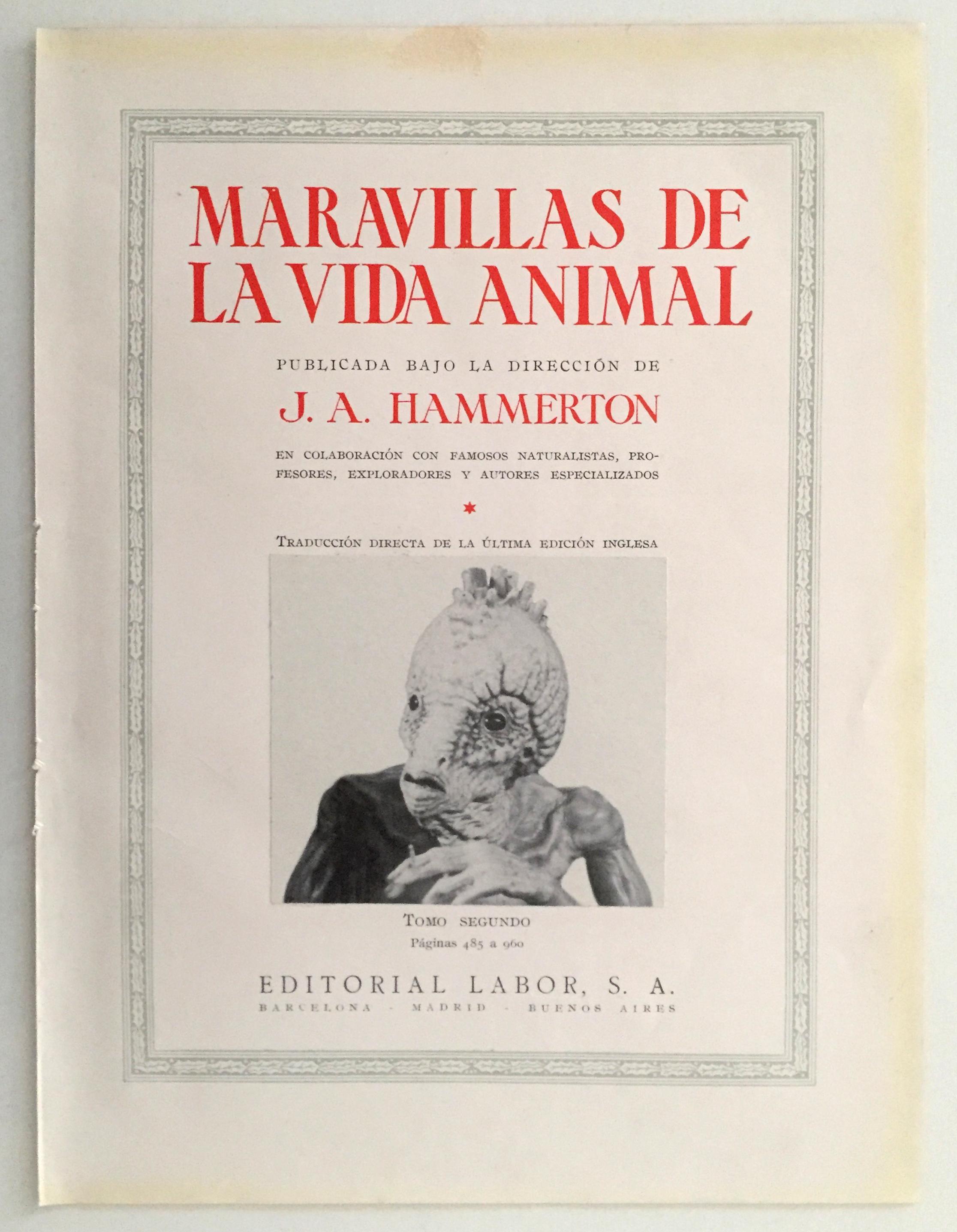 La enciclopedia 'Maravillas de la vida animal'.