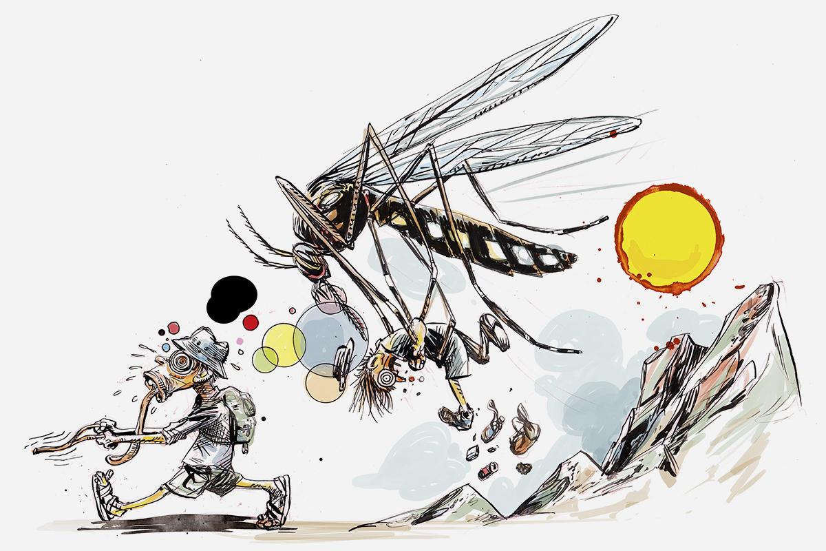 Caídas, insectos, quemaduras, 'bacterias a la barbacoa' y otras 'conspiraciones' de la naturaleza que pueden arruinarnos las vacaciones