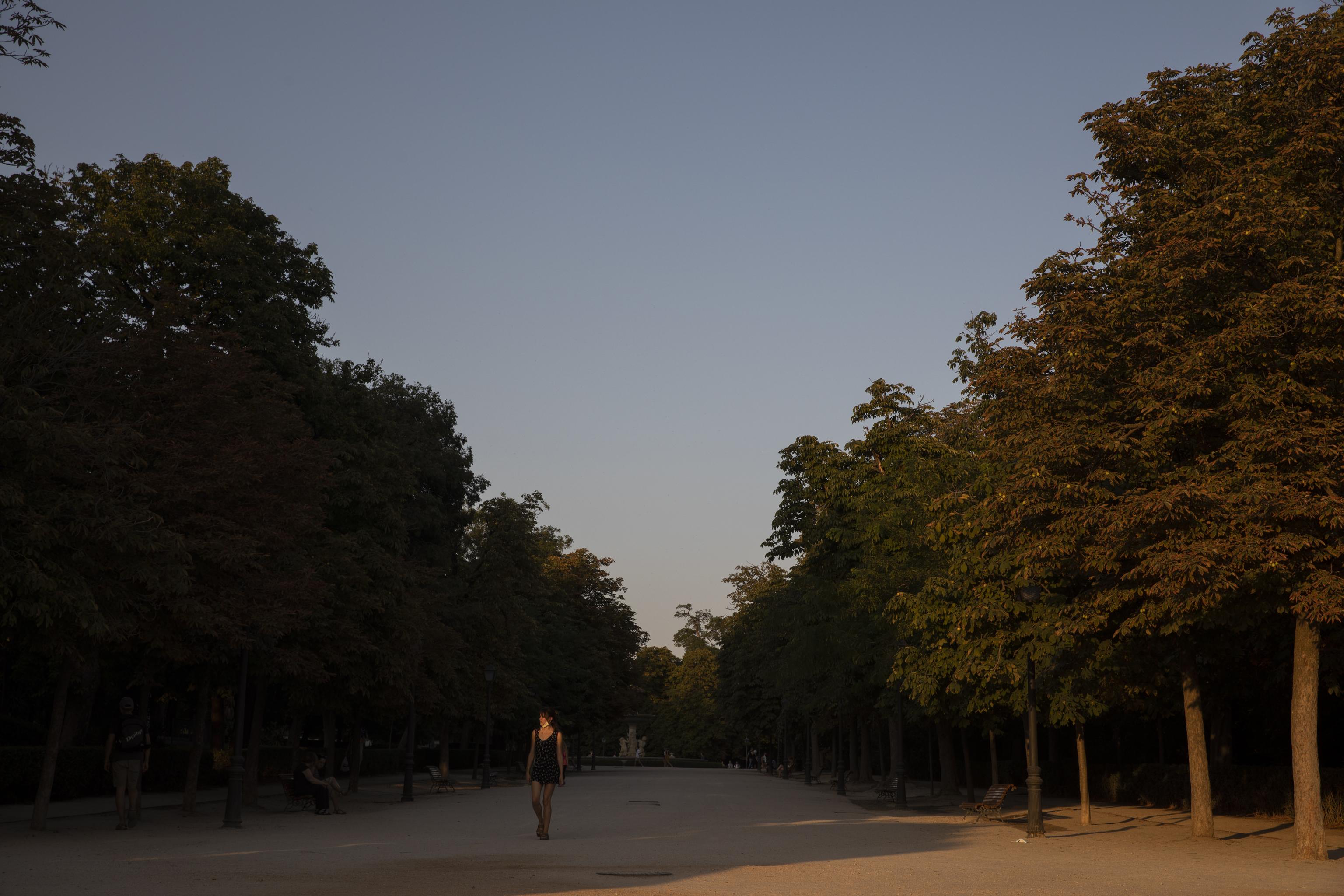 Parterre del parque de El Retiro.
