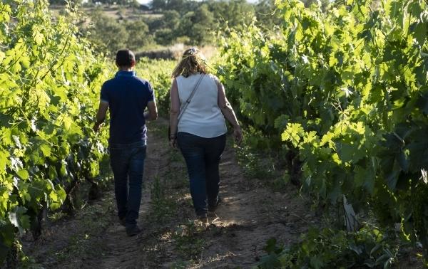 Paseo entre las viñas del Abuelo Flores.