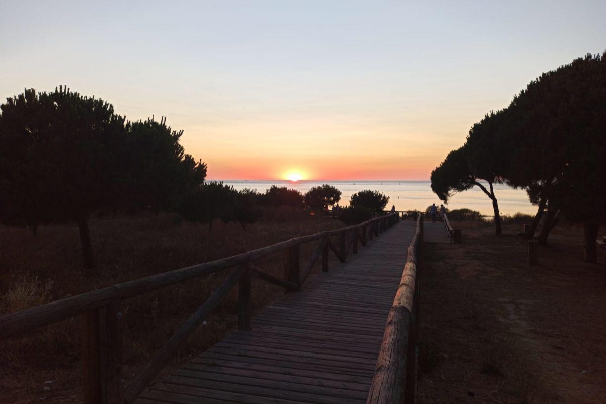Atardecer en Doñana.