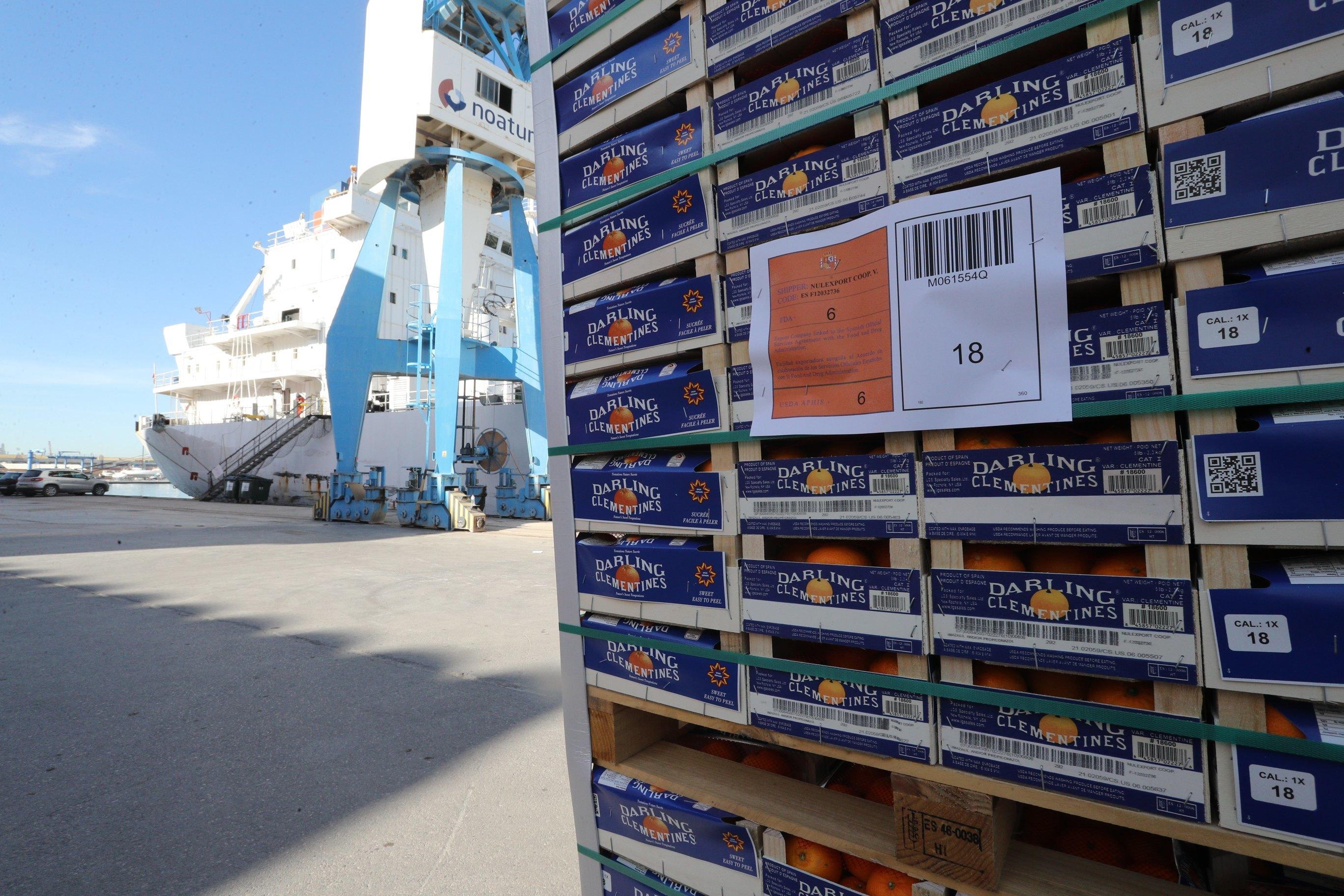 Cargamento de cítricos en el puerto de Castellón.