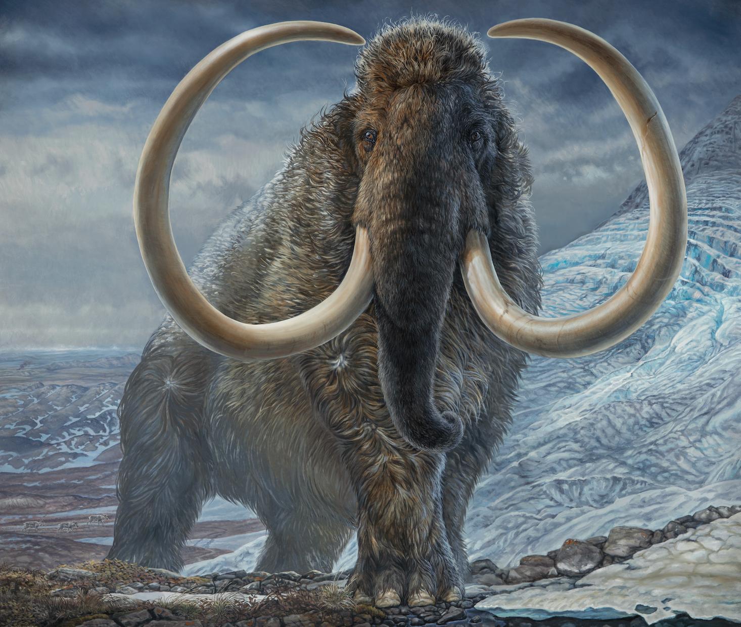 Ilustración de un mamut en el Ártico hace 17.100 años realizada a partir de una pintura del paleoartista James Havens