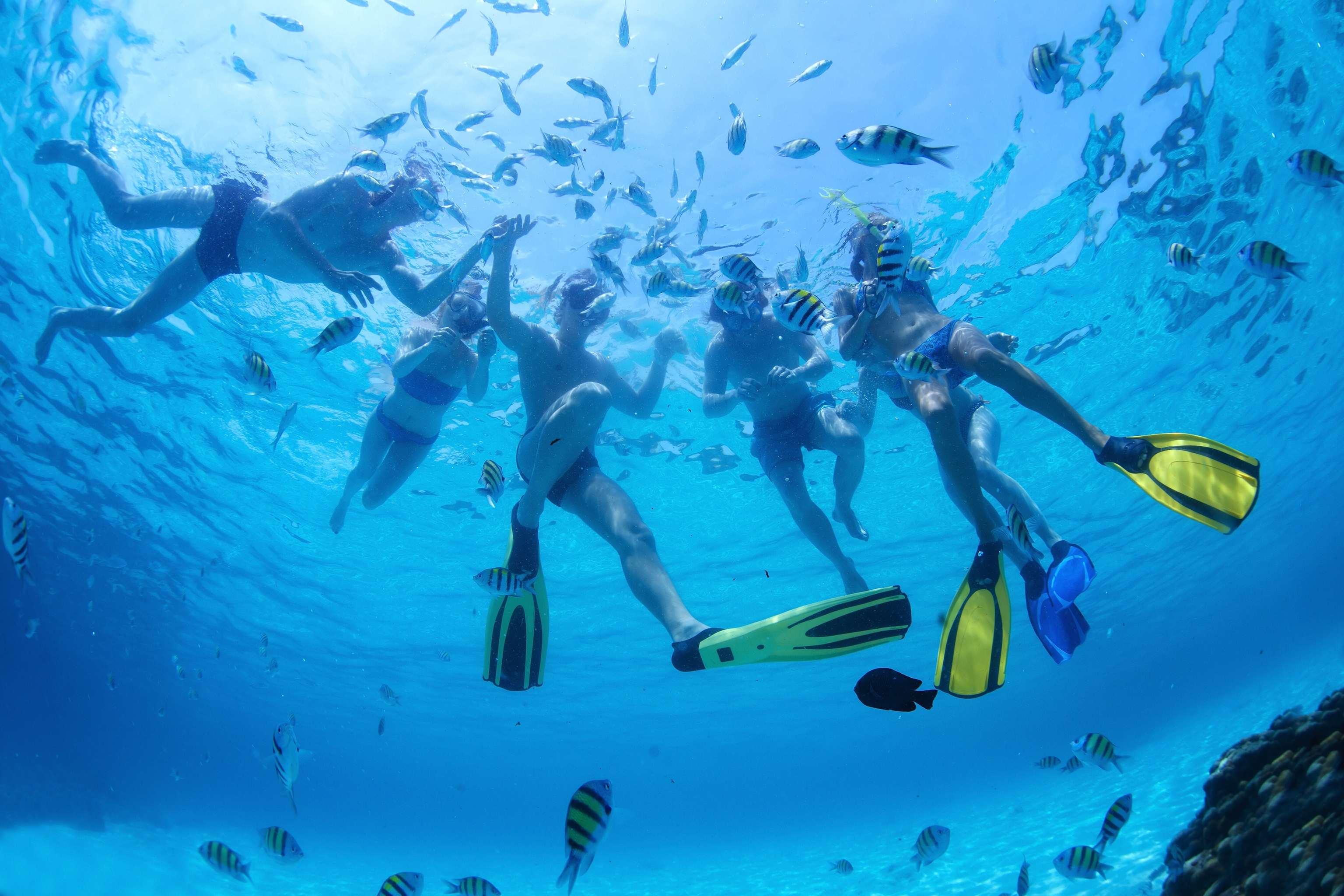 Actividades de agua como buceo y snorkel tienen menos impacto y mejoran la resistencia y potencia muscular, al tiempo que incrementan nuestra capacidad pulmonar.