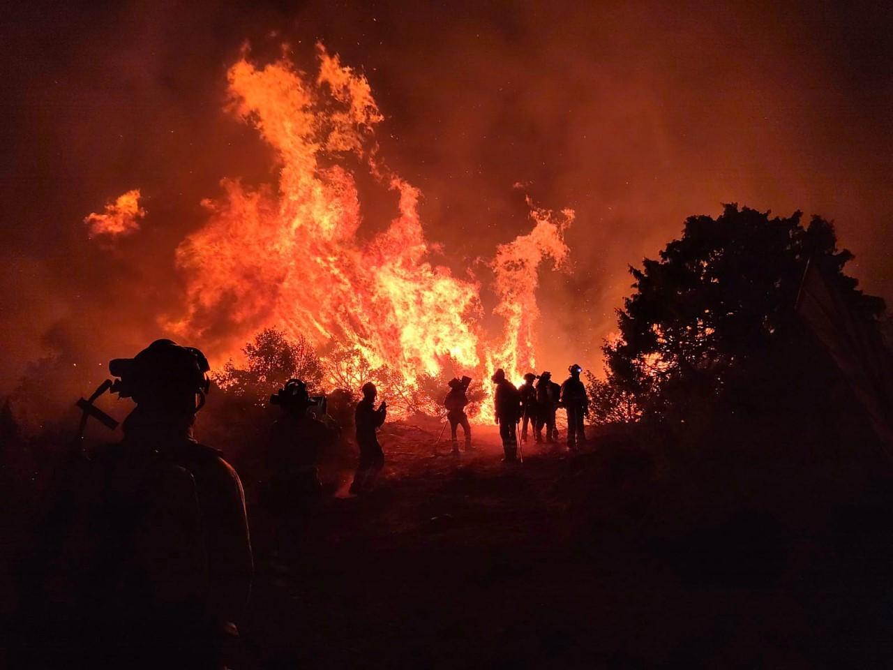 Incendio forestal en El Tiemblo (Ávila)