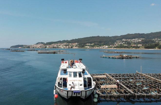 Embarcación entre bateas en la ría de Pontevedra.