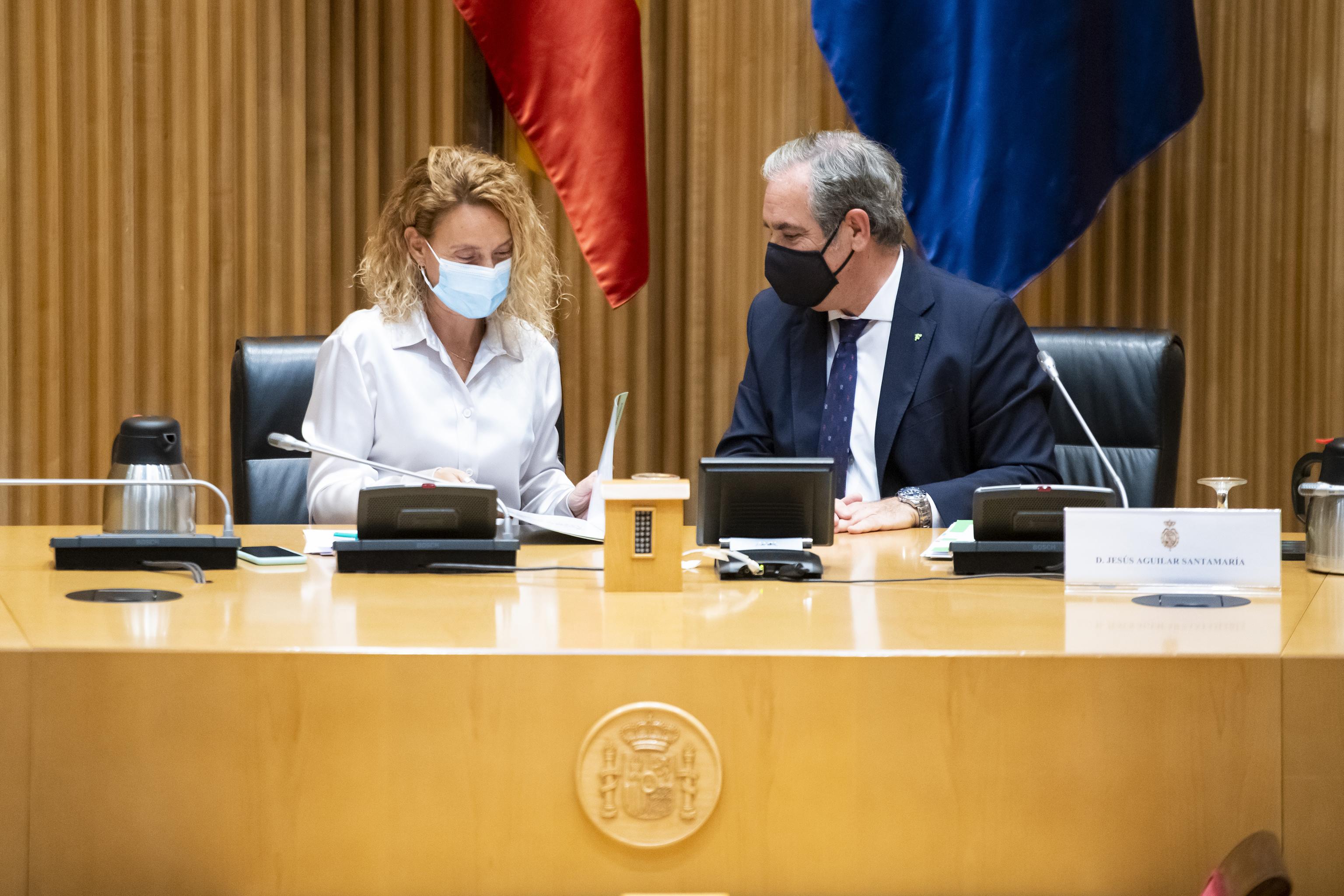 La presidenta del Congreso, Meritxell Batet, con el presidente del Consejo General de Colegios Oficiales de Farmacéuticos, Jesús Aguilar, en el Congreso.