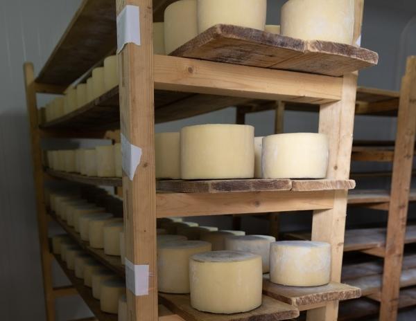 La quesería artesanal Cynara.