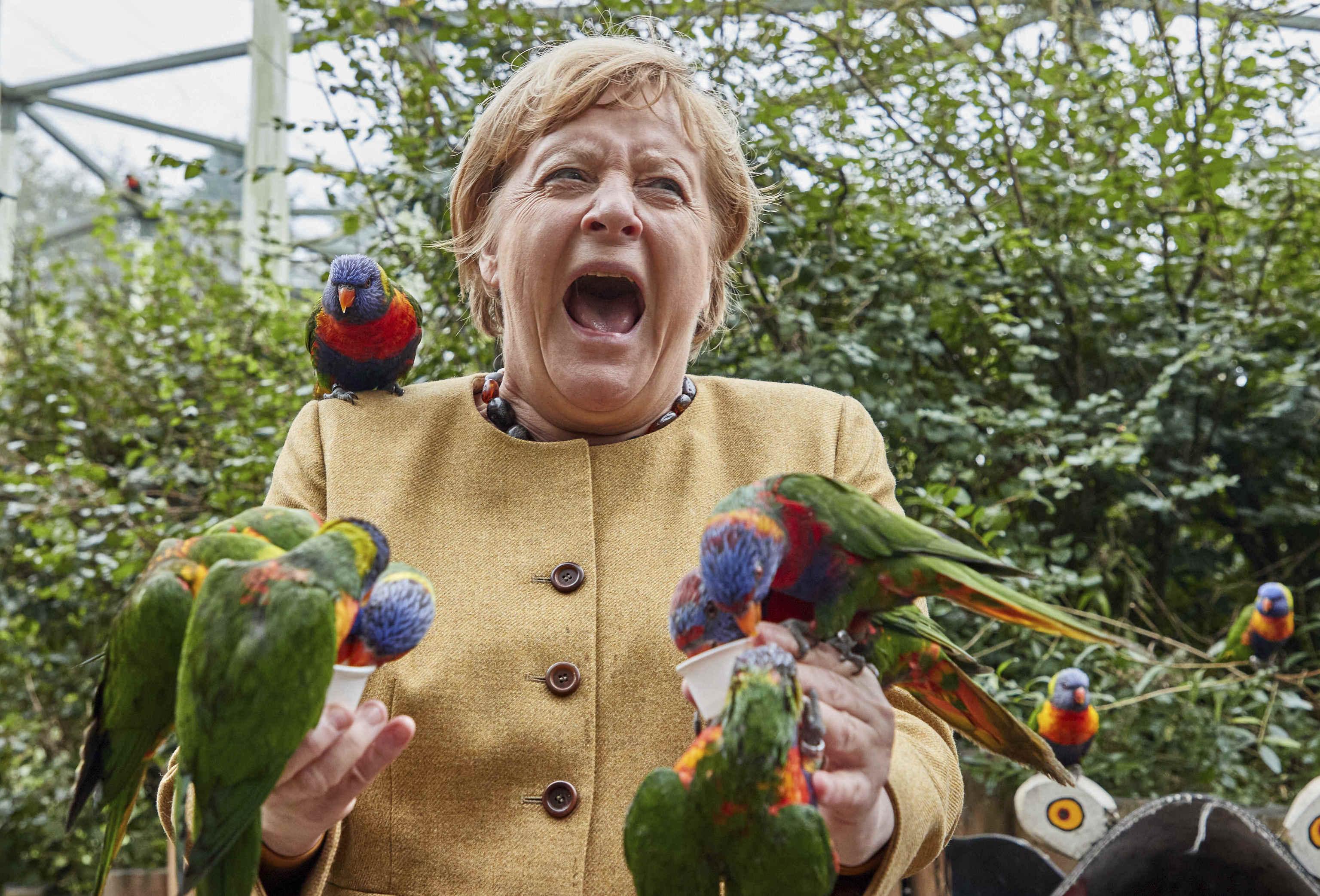 Angela Merkel rodeada de loros en Marlow, Alemania, este jueves.