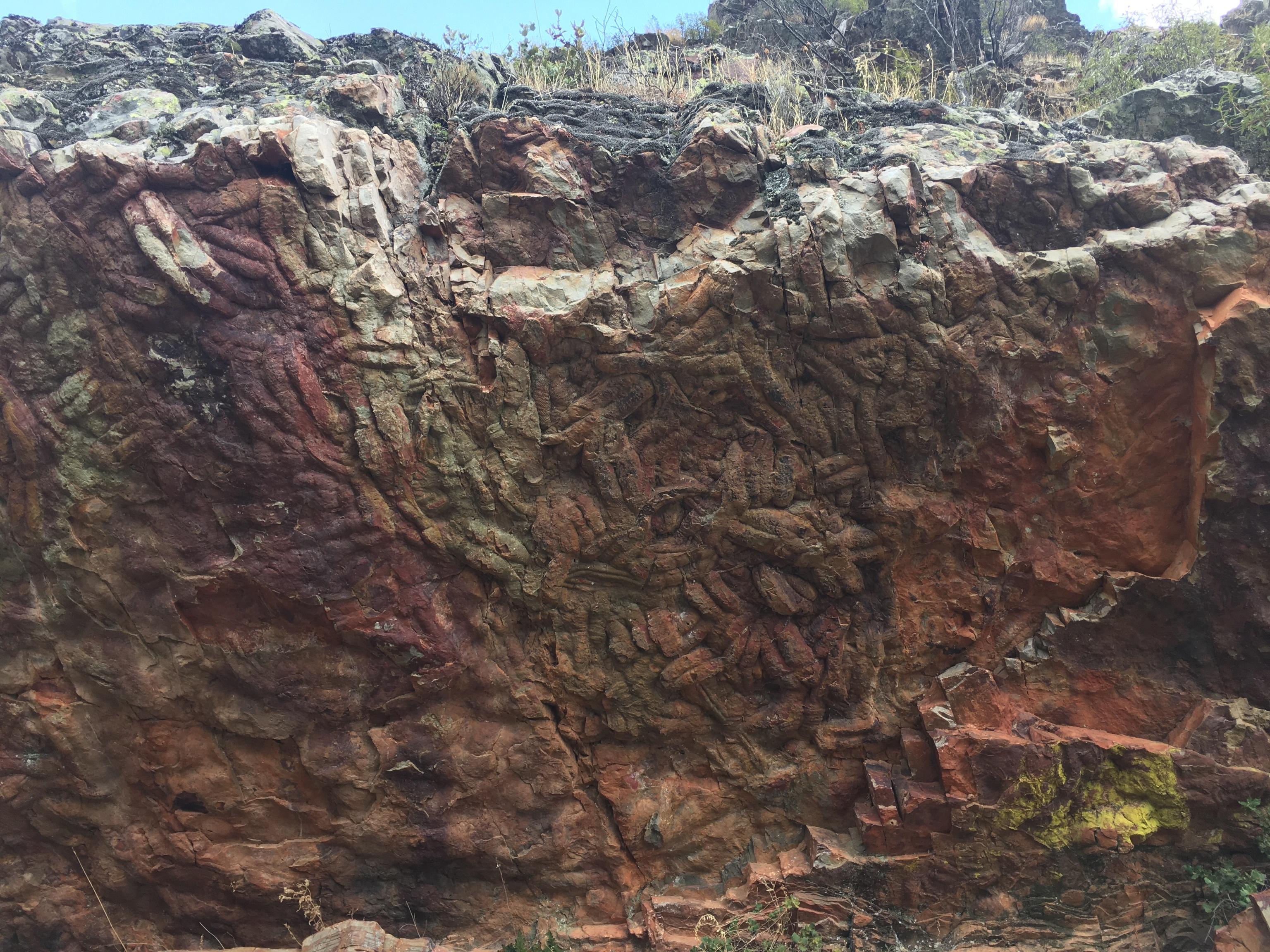 Roca con huellas de gusanos prehistóricos y trilobites.