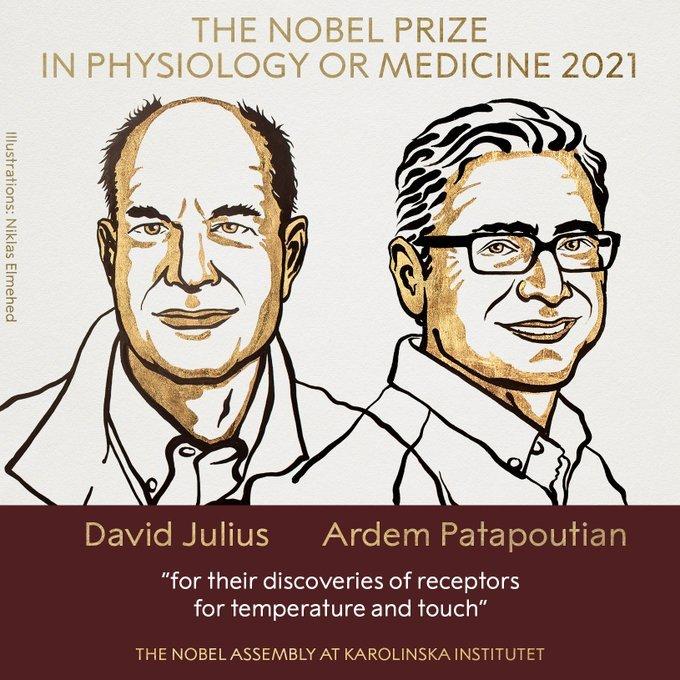 Premio Nobel de Medicina para los descubridores de los receptores de temperatura y tacto