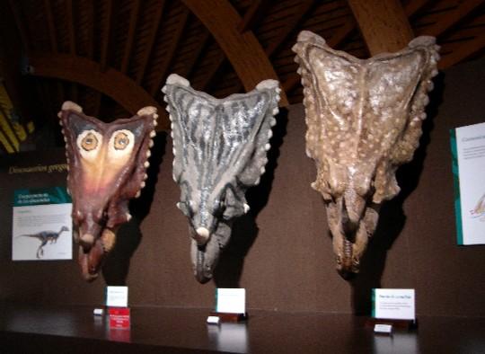 ¿Pudieron tener los dinosaurios alguno de estos patrones de coloración? Museo del Jurásico de Asturi