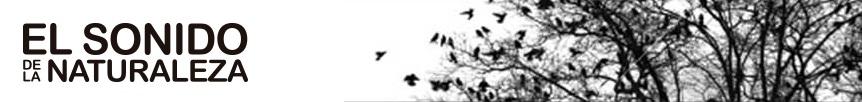 Blog El sonido de la naturaleza