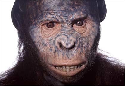 Reconstrucción de la Australopithecus afarensis Lucy / FRANCE 3