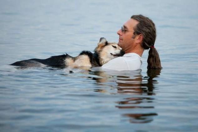 John Unger, bañando a su perro Schoep de 19 años para aliviar el dolor