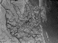 Imagen de Titán