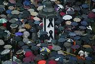 La manifestación en la Plaza de Colón.(EFE)