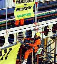 Dos de los activistas de Greenpeace que se encerraron en Moyresa. (EFE)