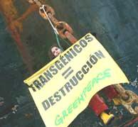 Una activisa, en el ancla del buque interceptado. (GREENPEACE)