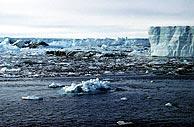 Vista de un iceberg desprendido de la Antártida debido al calentamiento del planeta. (AP)