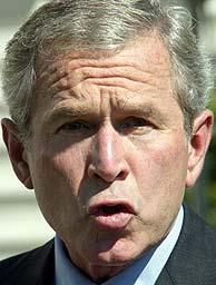 Geroge W. Bush, durante su declaración. (AFP)