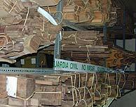 Parte de la madera intervenida.
