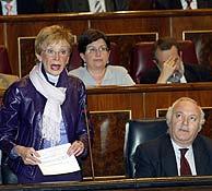 La vicepresidenta y Moratinos en el Congreso. (Julián Jaén)