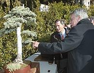 Felipe González, junto a uno de sus bonsáis. (Foto: Javi Martínez)