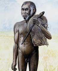 Reconstrucción del 'Homo Floresiensis'.