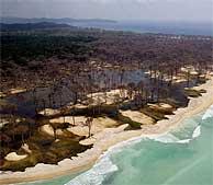 Imagen de una playa de Tailandia afectada por el tsunami. (Foto: AP)