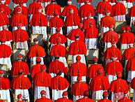 Cardenales en una imagen de archivo.
