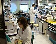 Uno de los laboratorios del CNB. (Foto: EFE)