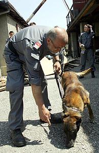 Un policía examina con la ayuda de un perro la casa donde se han encontrado los cuerpos de los bebés. (Foto: AP)