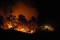 Un buldozer trata de abrirse paso entre las llamas. (Foto: EFE)