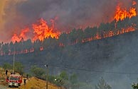Las llamas devoran los montes en Pampilhosa da Serra. (Foto:REUTERS)