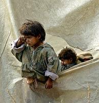 Un niño que sobrevivió al seísmo mira al exterior desde una tienda de campaña. (Foto: AP)