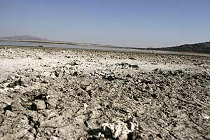 España sufre la peor sequía de su Historia. (Foto: EFE)