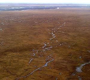 El Refugio Nacional de Vida Silvestre del Ártico, en 2001. (Foto: AP)