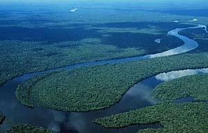 Vista aérea de una de las zonas de donde se ha obtenido la madera ilegal. (Foto: Greenpeace)