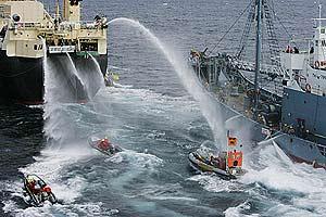 El barco japonés trata de impedir el paso a las lanchas de Greenpeace con chorros de agua a presión. (Foto: Greenpeace)