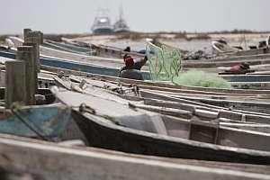 Un pescador de Nuadibu, con los cayucos utilizados para el traslado de inmigrantes. (Foto: EFE)